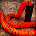 Red Overtone Serpent